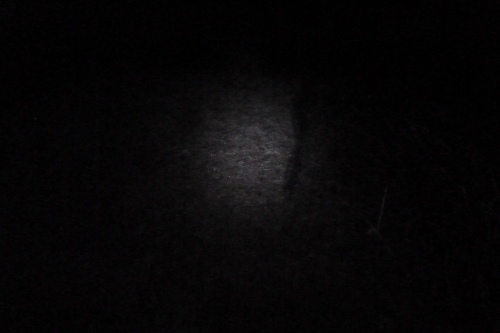 Not much to see at first - this is the light from my headlamp :) The sun joined the party soon enough...